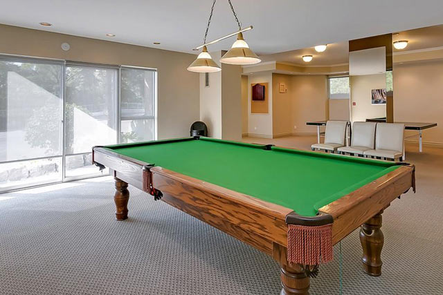 Billiards and ping pong.